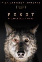 Plakat filmu Pokot